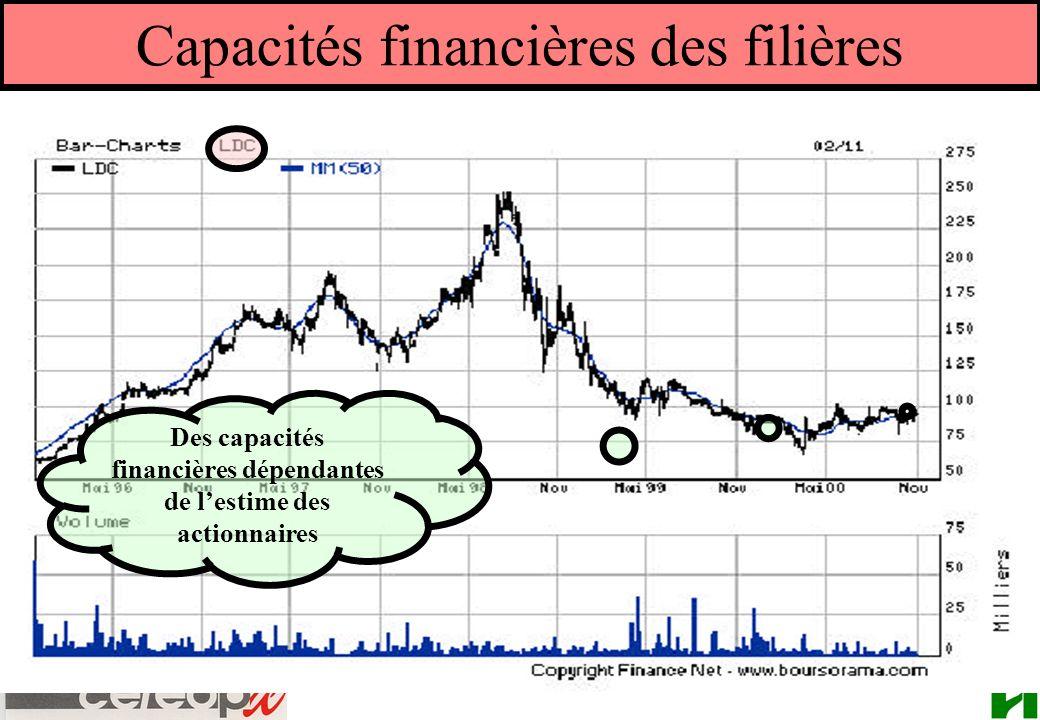 Capacités financières des filières Des capacités financières dépendantes de lestime des actionnaires