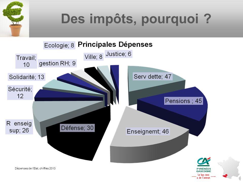 Des impôts, pourquoi ? Dépenses de lEtat, chiffres 2013
