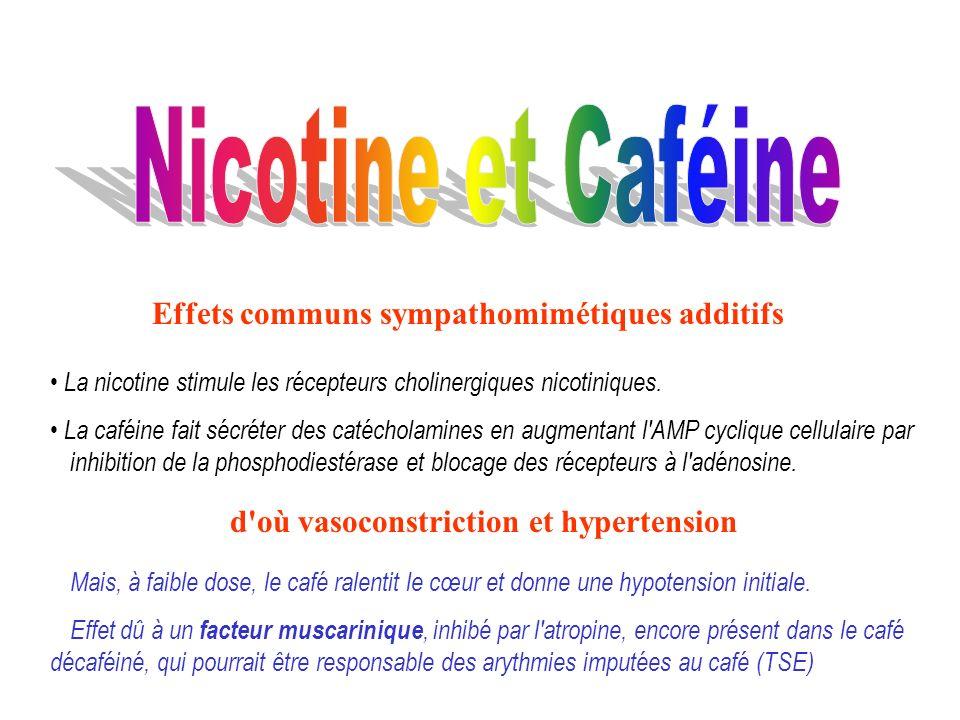 Effets communs sympathomimétiques additifs La nicotine stimule les récepteurs cholinergiques nicotiniques. La caféine fait sécréter des catécholamines
