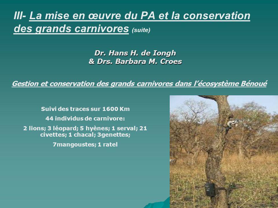 III- La mise en œuvre du PA et la conservation des grands carnivores (suite) Densité des lions: 2.25 lions/100 Km2 Sexe/ratio: 1 Mâle/3 femelles Aucune différence significative avec les lions de Waza en ce qui concerne la taille du corps.