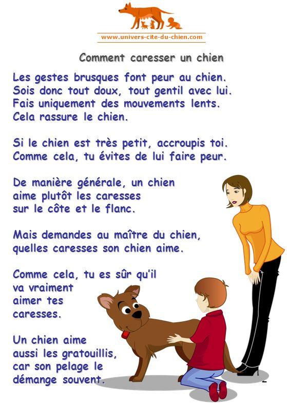 www.univers-cite-du-chien.com 2 Les gestes brusques font peur au chien. Sois donc tout doux, tout gentil avec lui. Fais uniquement des mouvements lent