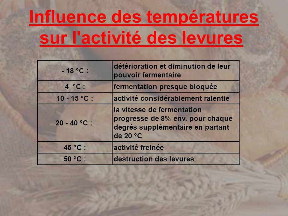 Influence des températures sur l'activité des levures - 18 °C : détérioration et diminution de leur pouvoir fermentaire 4 °C :fermentation presque blo
