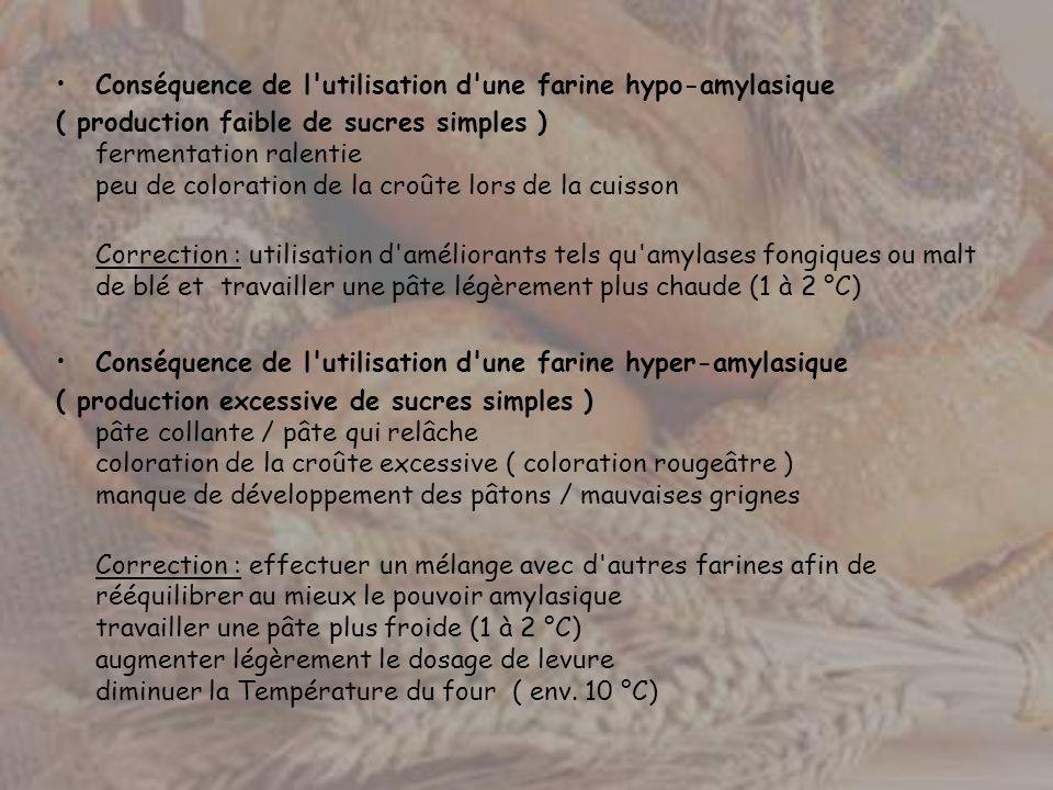 Conséquence de l'utilisation d'une farine hypo-amylasique ( production faible de sucres simples ) fermentation ralentie peu de coloration de la croûte