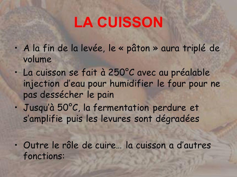 LA CUISSON A la fin de la levée, le « pâton » aura triplé de volume La cuisson se fait à 250°C avec au préalable injection deau pour humidifier le fou