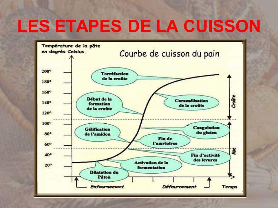 LES ETAPES DE LA CUISSON