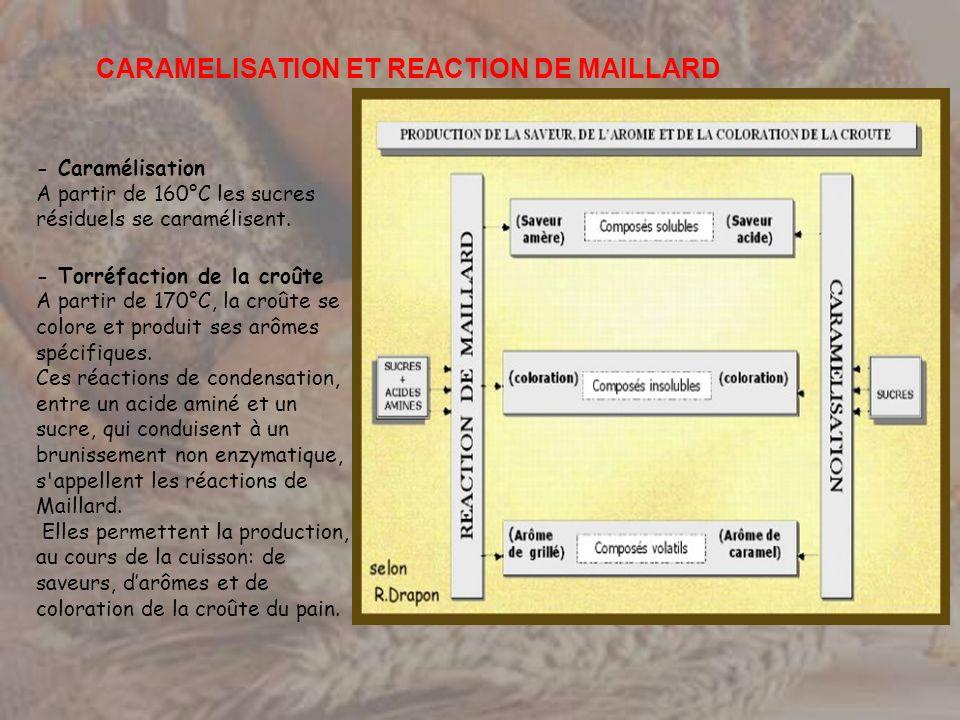 - Caramélisation A partir de 160°C les sucres résiduels se caramélisent. - Torréfaction de la croûte A partir de 170°C, la croûte se colore et produit