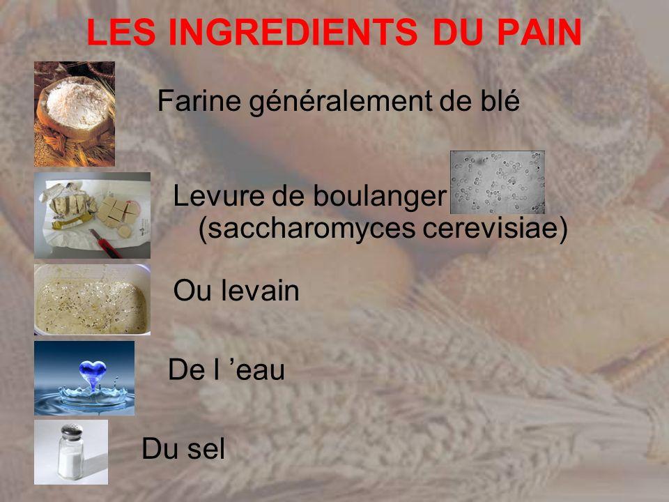 FARINE Elément de base de la fabrication de la pâte avec leau Donne au pain son aspect, le goût, couleur, consistance, nature de la mie et de la croûte.