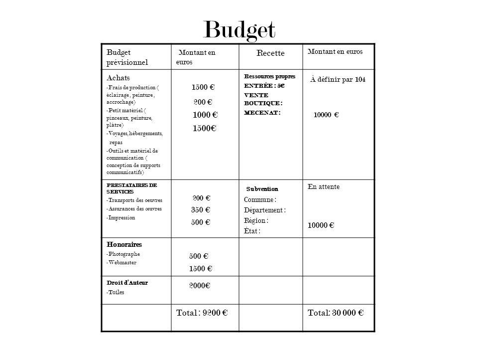 Budget Budget prévisionnel Montant en euros Recette Montant en euros Achats -Frais de production ( éclairage, peinture, accrochage) -Petit matériel (