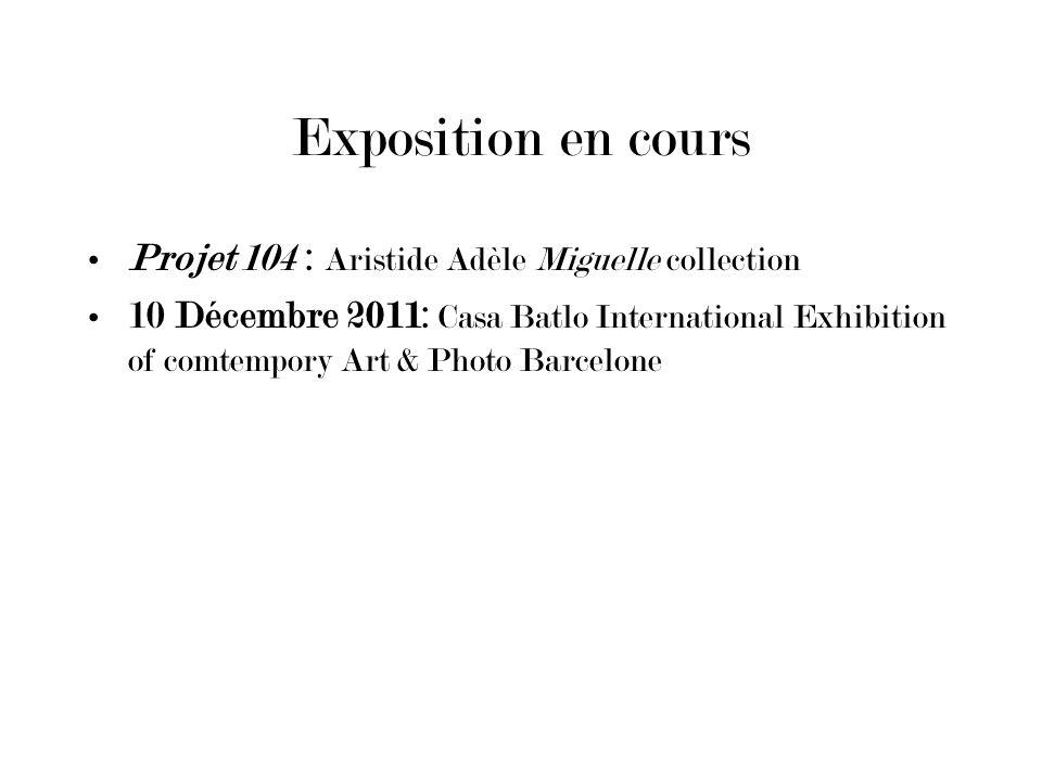 Exposition en cours Projet 104 : Aristide Adèle Miguelle collection 10 Décembre 2011: Casa Batlo International Exhibition of comtempory Art & Photo Ba