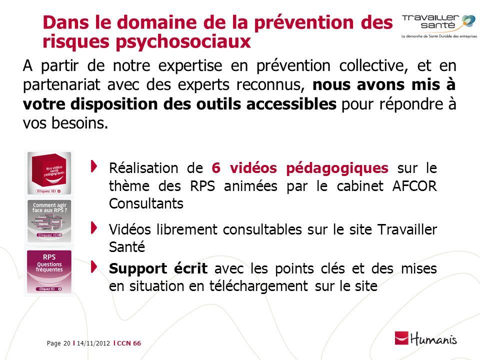 Page 20 l 14/11/2012 l CCN 66 Dans le domaine de la prévention des risques psychosociaux Réalisation de 6 vidéos pédagogiques sur le thème des RPS ani