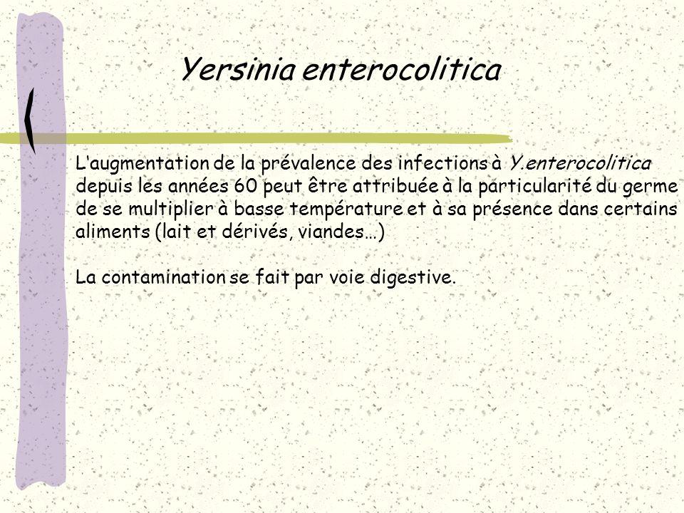 Yersinia enterocolitica Laugmentation de la prévalence des infections à Y.enterocolitica depuis les années 60 peut être attribuée à la particularité d