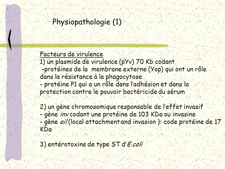 Physiopathologie (1) Facteurs de virulence 1) un plasmide de virulence (pYv) 70 Kb codant -protéines de la membrane externe (Yop) qui ont un rôle dans
