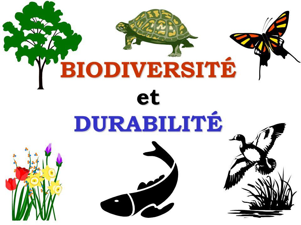 Sommaire Quest-ce que la biodiversité.Quest-ce que la durabilité.