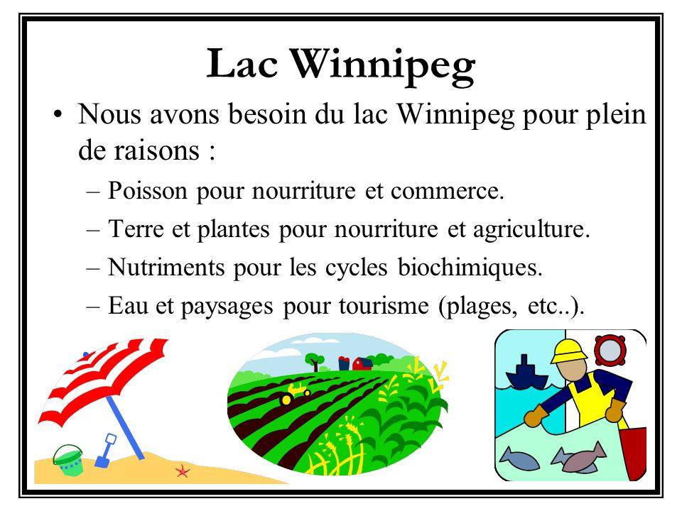 Lac Winnipeg Nous avons besoin du lac Winnipeg pour plein de raisons : –Poisson pour nourriture et commerce. –Terre et plantes pour nourriture et agri