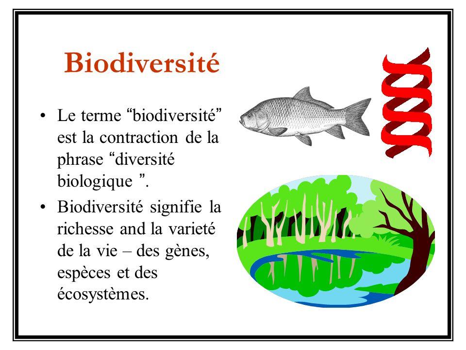 Le terme biodiversité est la contraction de la phrase diversité biologique. Biodiversité signifie la richesse and la varieté de la vie – des gènes, es