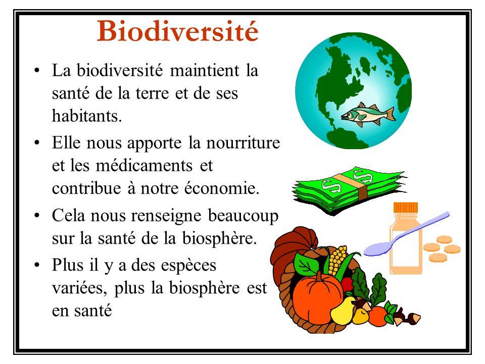 La biodiversité maintient la santé de la terre et de ses habitants. Elle nous apporte la nourriture et les médicaments et contribue à notre économie.