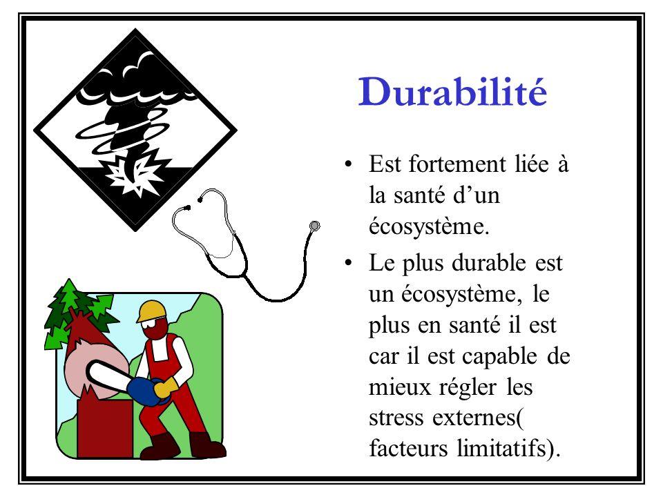Biodiversité and Durabilité La biodiversité dun écosystème contribue à la durabilité dun écosystème.