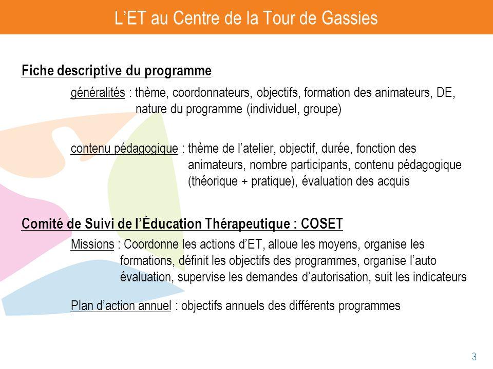 3 LET au Centre de la Tour de Gassies Fiche descriptive du programme généralités : thème, coordonnateurs, objectifs, formation des animateurs, DE, nat