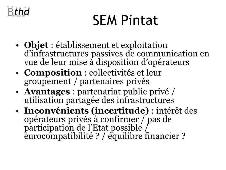 SEM Pintat Objet : établissement et exploitation dinfrastructures passives de communication en vue de leur mise à disposition dopérateurs Composition
