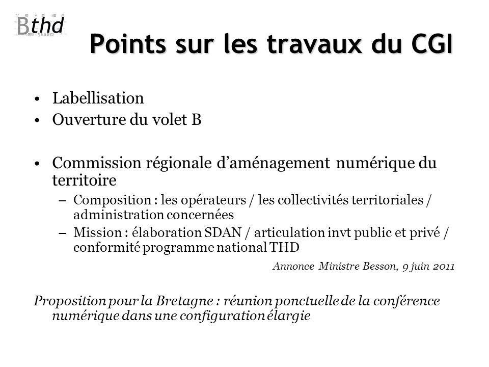 Points sur les travaux du CGI Labellisation Ouverture du volet B Commission régionale daménagement numérique du territoire –Composition : les opérateu