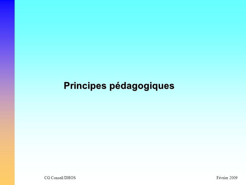 CG Conseil/DHOSFévrier 2009 Principes pédagogiques