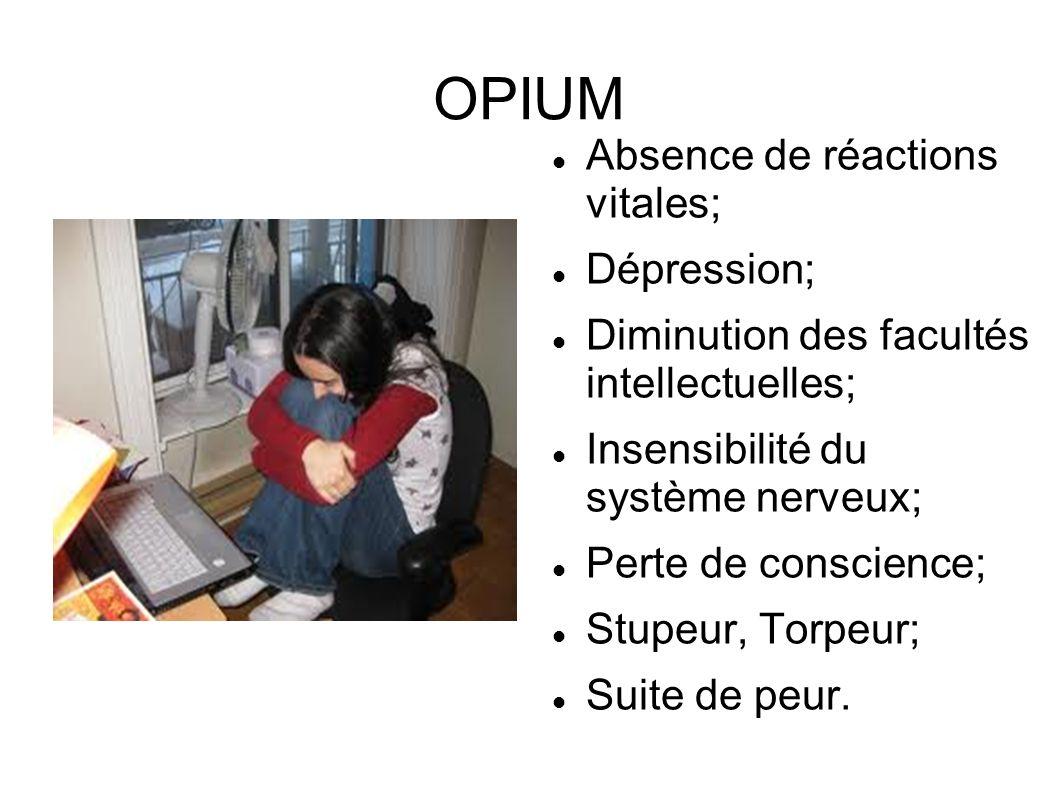 OPIUM Absence de réactions vitales; Dépression; Diminution des facultés intellectuelles; Insensibilité du système nerveux; Perte de conscience; Stupeu