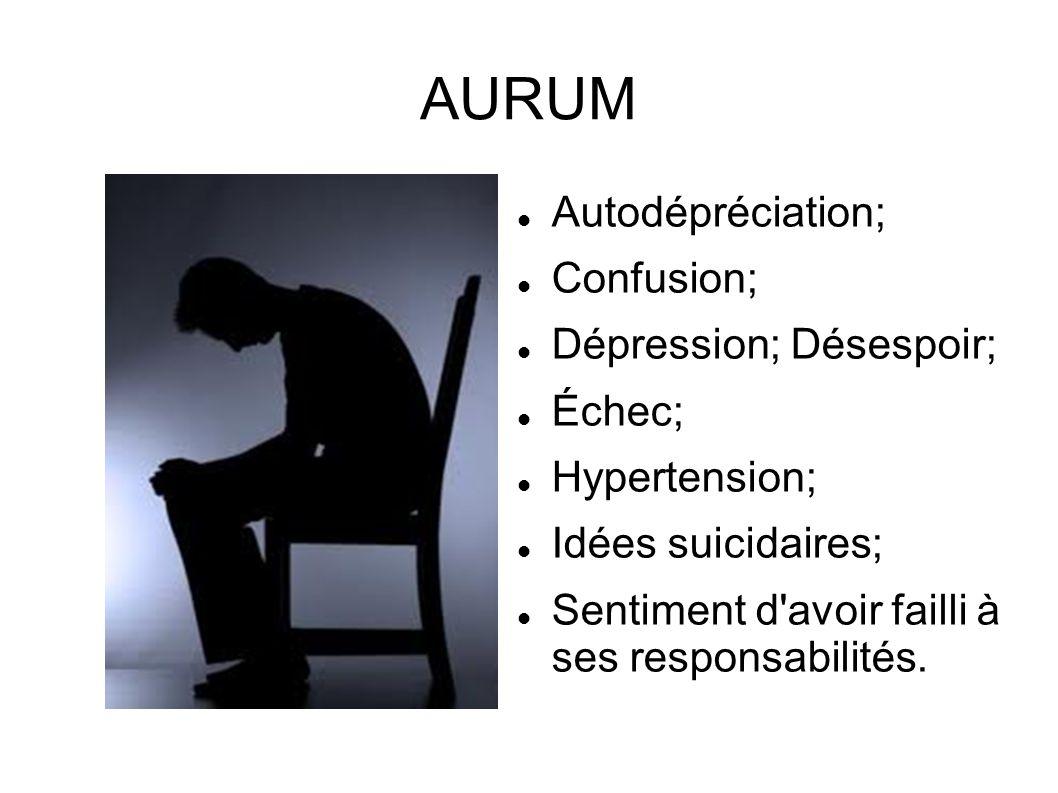 AURUM Autodépréciation; Confusion; Dépression; Désespoir; Échec; Hypertension; Idées suicidaires; Sentiment d'avoir failli à ses responsabilités.