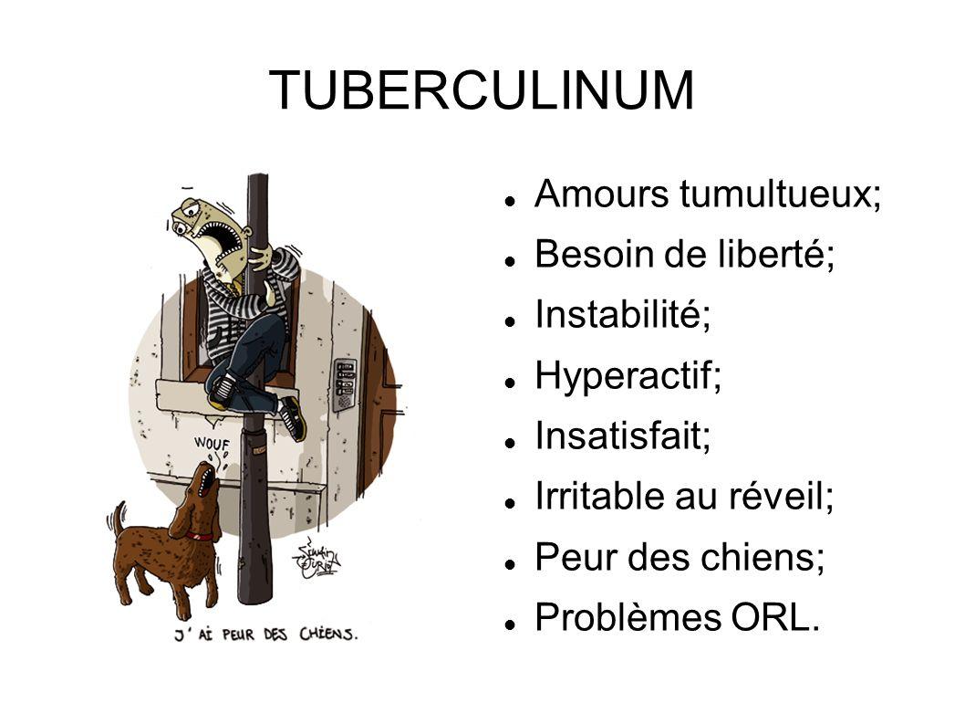 TUBERCULINUM Amours tumultueux; Besoin de liberté; Instabilité; Hyperactif; Insatisfait; Irritable au réveil; Peur des chiens; Problèmes ORL.