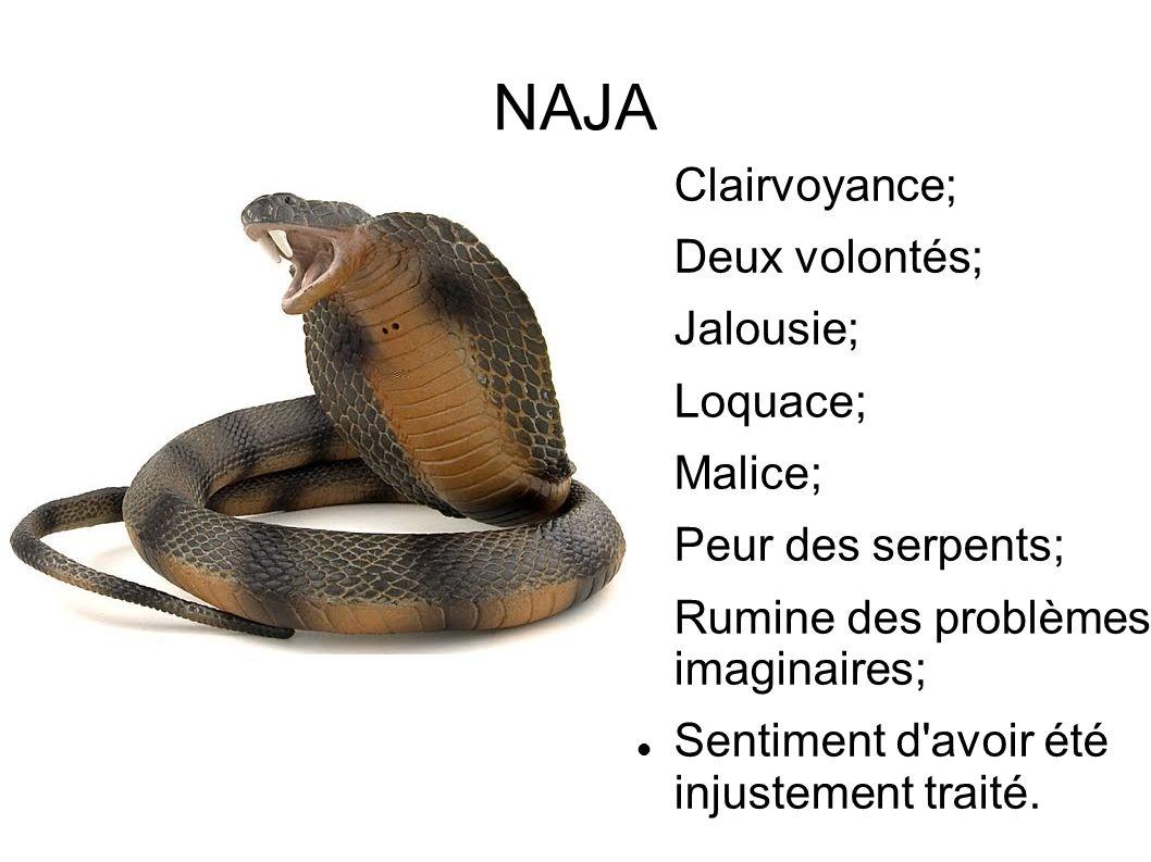 NAJA Clairvoyance; Deux volontés; Jalousie; Loquace; Malice; Peur des serpents; Rumine des problèmes imaginaires; Sentiment d'avoir été injustement tr