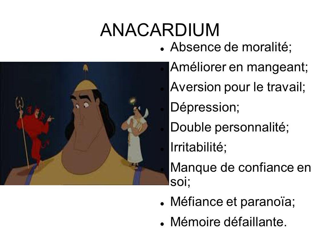 ANACARDIUM Absence de moralité; Améliorer en mangeant; Aversion pour le travail; Dépression; Double personnalité; Irritabilité; Manque de confiance en