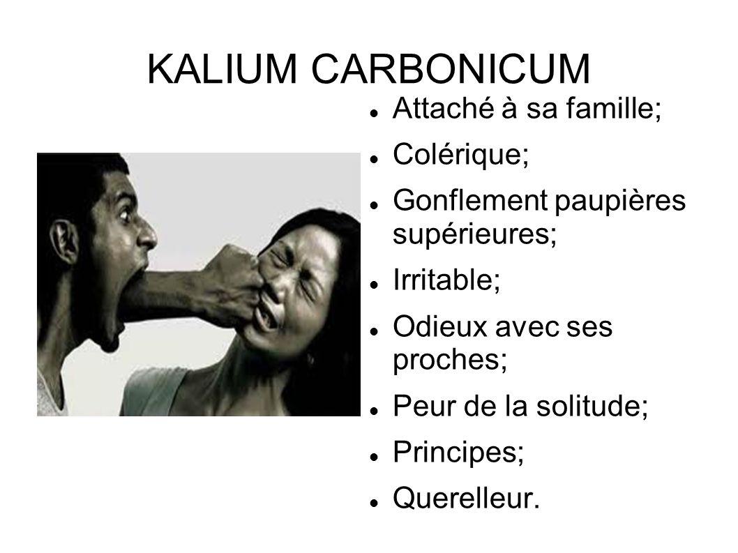 KALIUM CARBONICUM Attaché à sa famille; Colérique; Gonflement paupières supérieures; Irritable; Odieux avec ses proches; Peur de la solitude; Principe
