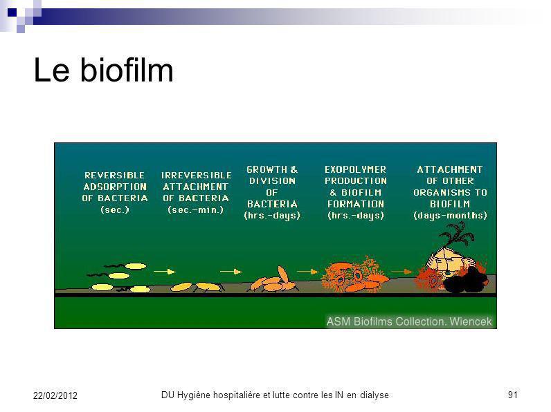 DU Hygiène hospitalière et lutte contre les IN en dialyse 90 22/02/2012