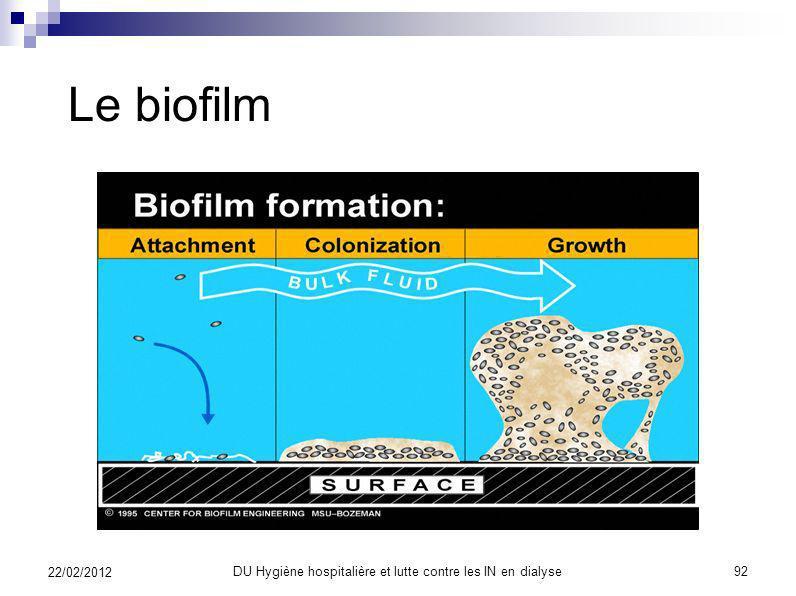 Le biofilm DU Hygiène hospitalière et lutte contre les IN en dialyse91 22/02/2012