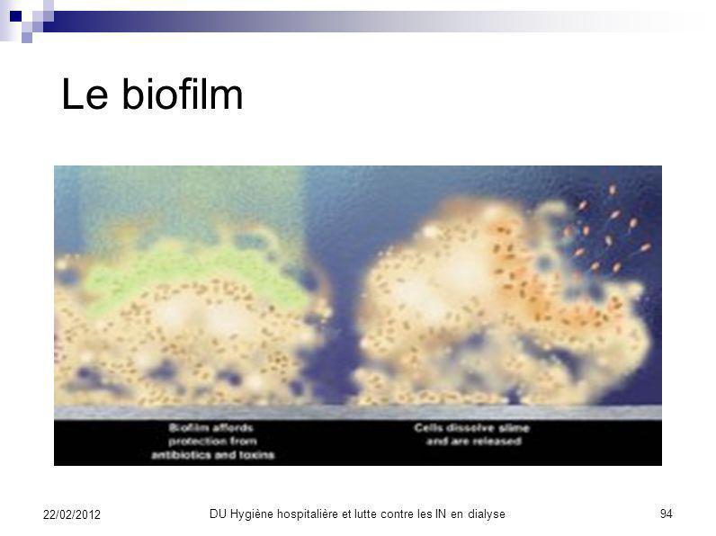 Le biofilm 22/02/2012 93DU Hygiène hospitalière et lutte contre les IN en dialyse