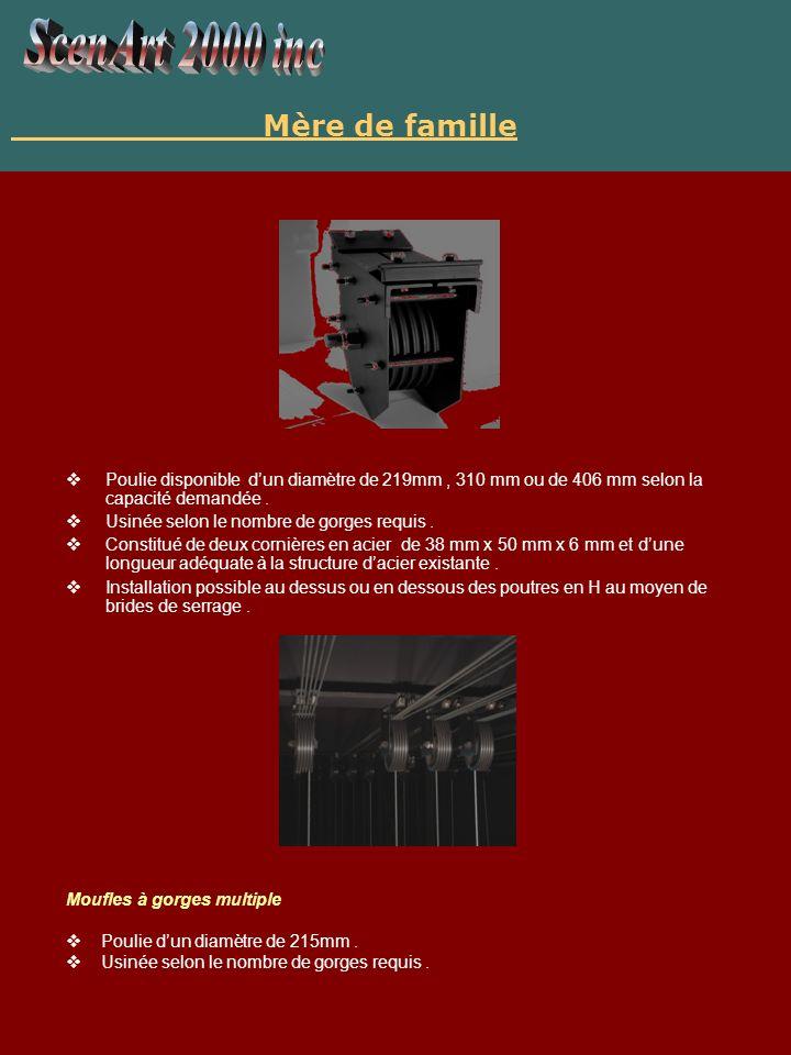 Manette de blocage Constituée de fer de première qualité, norme ASTM classe 30,épaisseur minimale de 8mm.