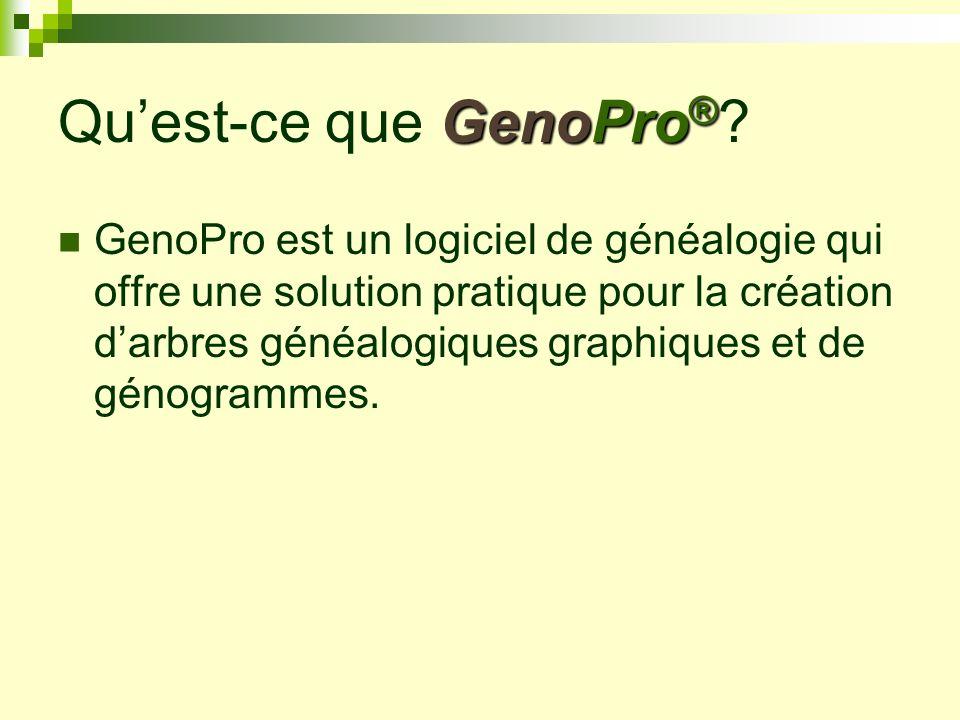 Interface graphique Linterface graphique renferme un écran de dessin où lutilisateur conçoit le génogramme.