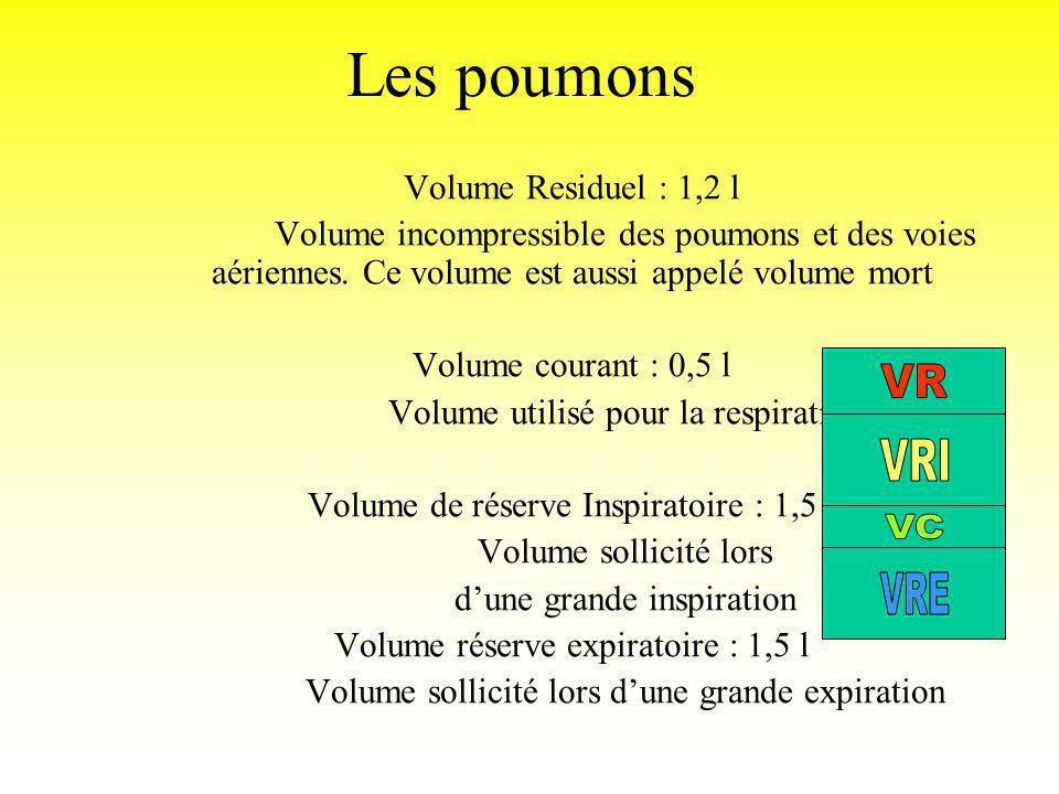 Les poumons Volume Residuel : 1,2 l Volume incompressible des poumons et des voies aériennes. Ce volume est aussi appelé volume mort Volume courant :