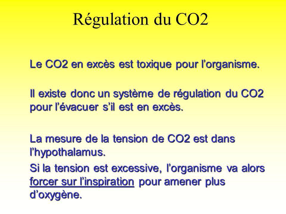 Régulation du CO2 Le CO2 en excès est toxique pour lorganisme. Il existe donc un système de régulation du CO2 pour lévacuer sil est en excès. La mesur