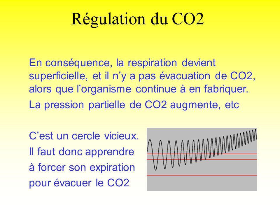 Régulation du CO2 En conséquence, la respiration devient superficielle, et il ny a pas évacuation de CO2, alors que lorganisme continue à en fabriquer