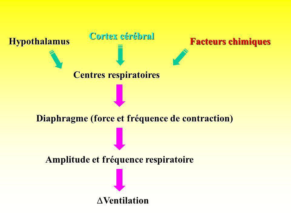 Cortex cérébral Hypothalamus Facteurs chimiques Centres respiratoires Diaphragme (force et fréquence de contraction) Amplitude et fréquence respiratoi