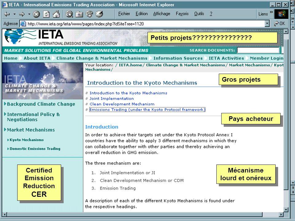 Pays acheteur Mécanisme lourd et onéreux Gros projets Certified Emission Reduction CER Petits projets???????????????