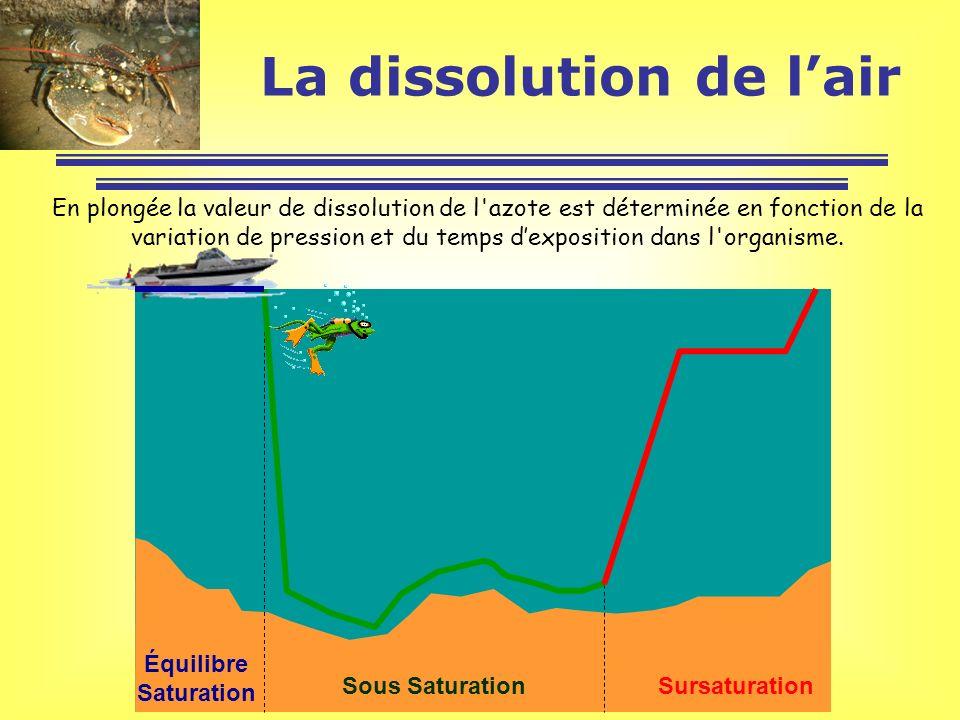 En plongée la valeur de dissolution de l'azote est déterminée en fonction de la variation de pression et du temps dexposition dans l'organisme. Équili