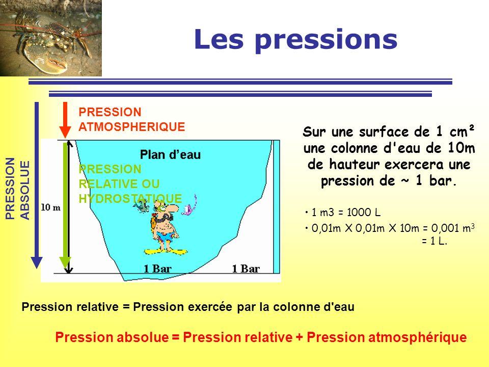 Les pressions Sur une surface de 1 cm² une colonne d'eau de 10m de hauteur exercera une pression de ~ 1 bar. 1 m3 = 1000 L 0,01m X 0,01m X 10m = 0,001