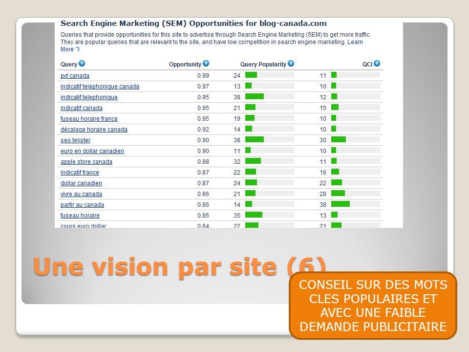 Une vision par site (6) CONSEIL SUR DES MOTS CLES POPULAIRES ET AVEC UNE FAIBLE DEMANDE PUBLICITAIRE