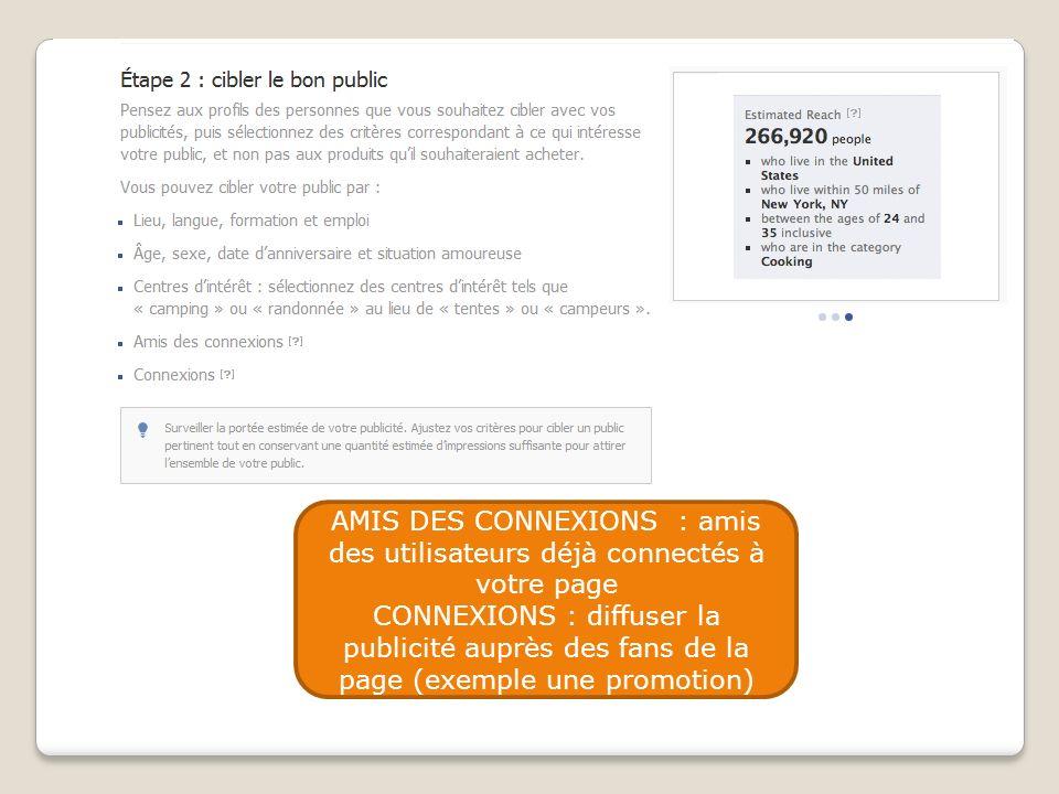 AMIS DES CONNEXIONS : amis des utilisateurs déjà connectés à votre page CONNEXIONS : diffuser la publicité auprès des fans de la page (exemple une pro