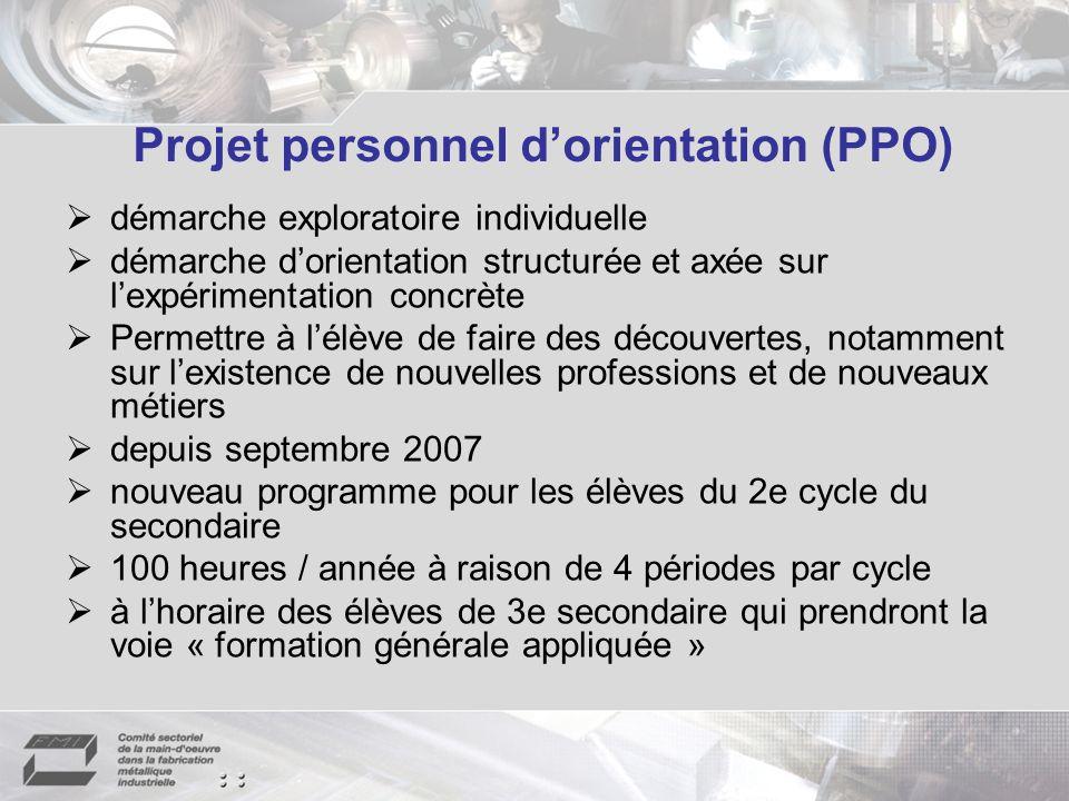 Projet personnel dorientation (PPO) démarche exploratoire individuelle démarche dorientation structurée et axée sur lexpérimentation concrète Permettr