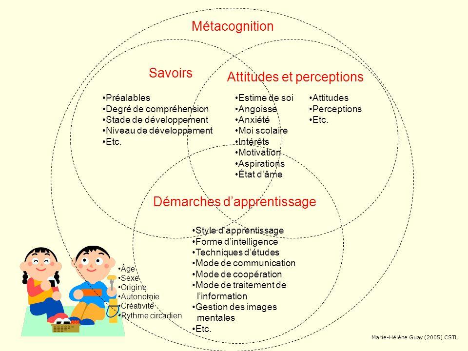 Attitudes et perceptions Démarches dapprentissage Métacognition Savoirs Guay (2005) inspiré de Daneault (2005), Scallon (2004) et C.S. des Patriotes U