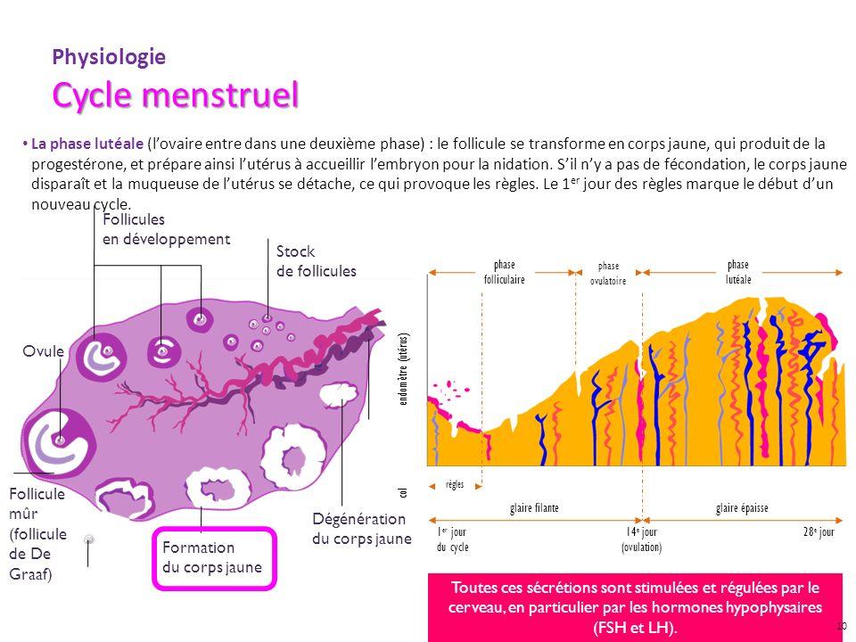 GYN09007 DIA OCT 09 Cycle menstruel Physiologie Cycle menstruel La phase lutéale (lovaire entre dans une deuxième phase) : le follicule se transforme