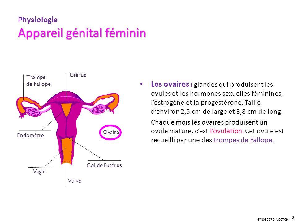 GYN09007 DIA OCT 09 Appareil génital féminin Physiologie Appareil génital féminin Les ovaires : glandes qui produisent les ovules et les hormones sexu