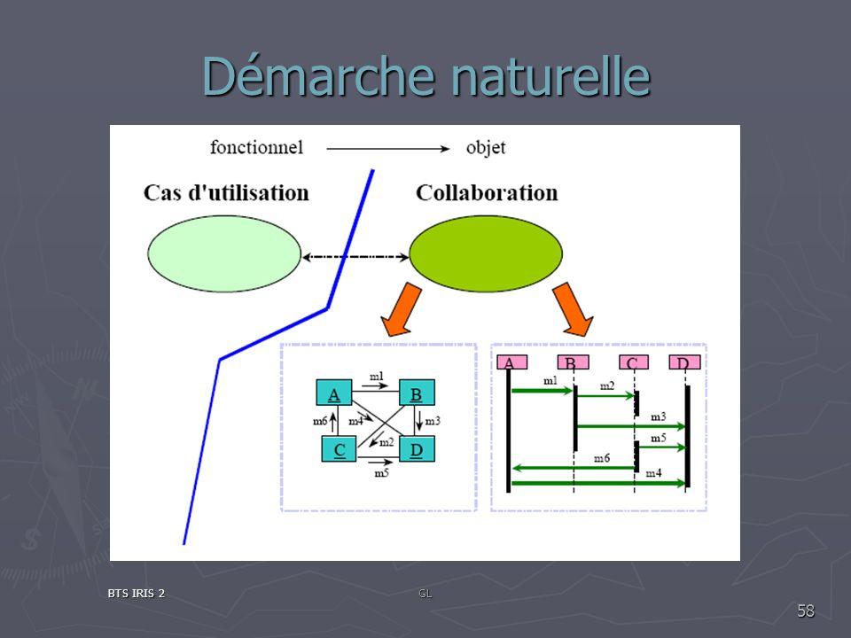 Démarche naturelle BTS IRIS 2GL 58